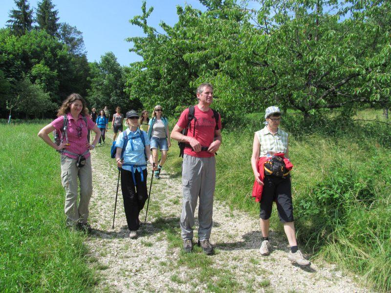 Juni 2015 Wanderung Zipfelbachschlucht 11
