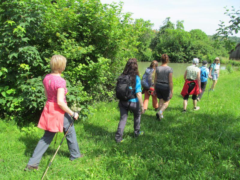 Juni 2015 Wanderung Zipfelbachschlucht 13