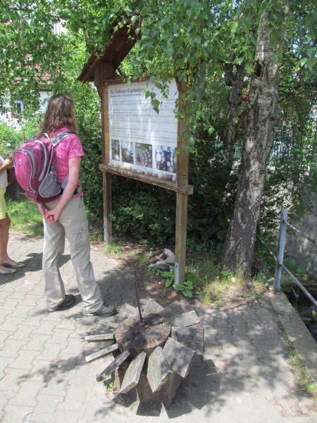 Juni 2015 Wanderung Zipfelbachschlucht 17