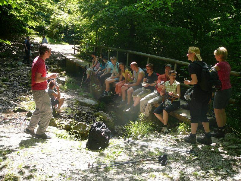 Juni 2015 Wanderung Zipfelbachschlucht 22