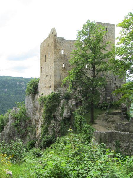 Juni 2015 Wanderung Zipfelbachschlucht 24