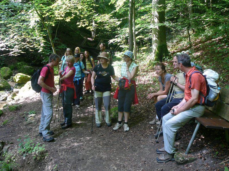 Juni 2015 Wanderung Zipfelbachschlucht 9